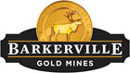 Barkerville Gold Mines Ltd. company