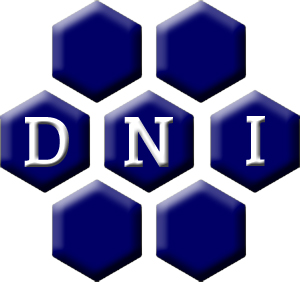 DNI Metals Inc.